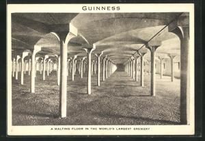 AK Dublin, Brewery of Arthur Guinness, Son & Co., Malting Floor
