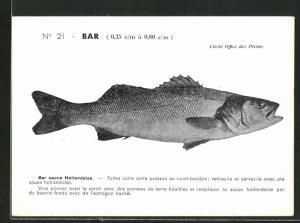 AK Bar, Barsch