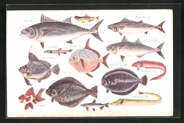 AK Fischarten in der See um Japan 0
