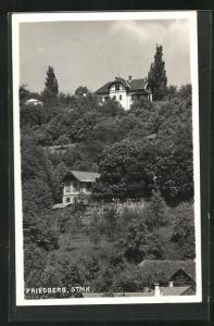 AK Friedberg / Stmk., Häuser am Hang