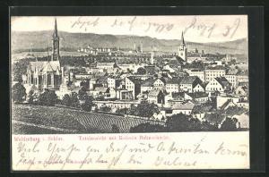 AK Waldenburg, Totalansicht mit Kolonie Bahnschacht