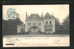 AK Theillay, Le Chateau des Vgonnieres