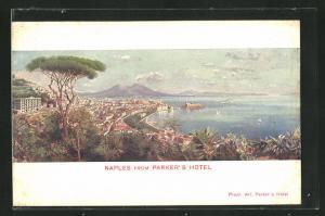 Künstler-AK Naples, View from Parker's Hotel