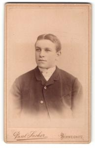 Fotografie Paul Sacher, Schweidnitz, Portrait bürgerlicher Herr im Anzug mit Fliege