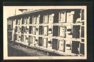 AK Sprottau, Kriegsgefangene, Kaninchenzucht, Allied POW Camp