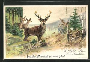 Lithographie Rehe und Hirsch im Wald