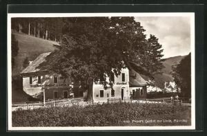 AK Mürzzuschlag, Gasthof zur Linde, Mürzsteg