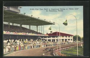 AK St. Petersburg, FL, First Turn Thrill in Greyhound Racing at Derby Lane