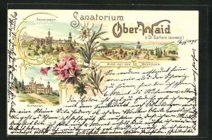Lithographie St. Gallen, Sanatorium Ober-Waid, Auffahrt, Blick auf den Bodensee