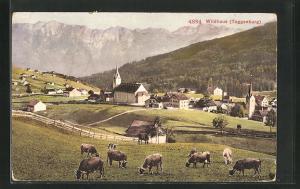 AK Wildhaus, Ortspartie mit Kirche, Toggenburg