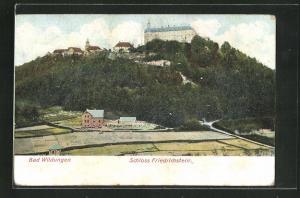 Relief-AK Bad Wildungen, Schloss Friedrichstein