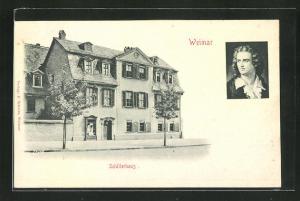Relief-AK Weimar, Portrait und Wohnhaus von Schiller