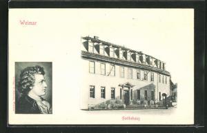 Relief-AK Weimar, Portrait und Wohnhaus von Goete