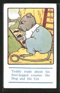Künstler-AK Teddy reads about his four-legged cousins..., Ratte mit Buch