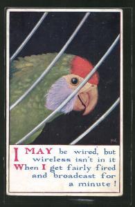 Künstler-AK bunter Papagei hinter einem Gitter