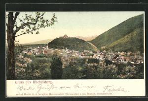 AK Michelsberg, Ortsansicht