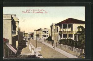 AK Tel-Aviv, Grusenberg Strasse mit Wagen