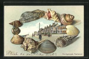 Passepartout-Lithographie Fleetwood, the Esplanade, Rahmen mit Muscheln