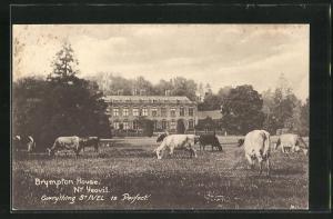 AK Yeovil, Brympton House
