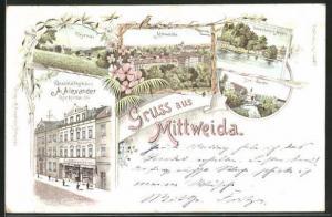 Lithographie Mittweida, Geschäftshaus Alexander, Rochlitzer Str., Drei Werken, Lauenhainer Mühle, Ringethal