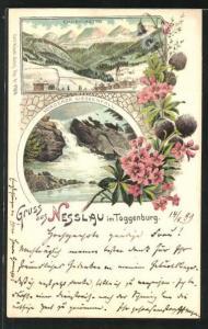 Lithographie Nesslau im Toggenburg, Churfirsten, Gesamtansicht, Alpenpanorama, Vorderer Giessenfall