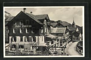 AK Seelisberg, Hotel Waldegg