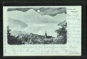 Mondschein-AK Vitznau, Panoramablick vom Berg