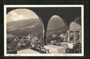 AK Bad Flinsberg, Gasthaus Waldfrieden, Blick auf einen Teil der Ortschaft