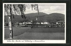 AK Zobten, Zobtenberg und Bismarckturm