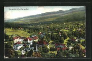 AK Schreiberhau-Mariental, Teilansicht mit Blick ins Land