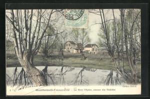 AK Montfermeil-Franceville, La Mare I`Epine, avenue des Violettes