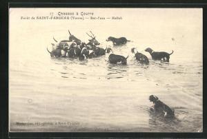AK Saint-Fargeau, Le Foret, Chasses a Courre, Bat-l`eau, Hallali, Jagd auf einen Hirsch