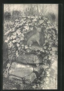 AK Asnières, Cimetière des Chiens / Hundefriedhof, Grabmal von Jappy