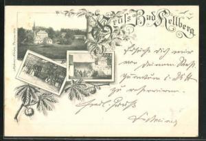 Vorläufer-AK Bad Hellberg, 1895, drei Motive aus dem Ort