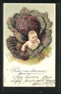 Präge-AK Baby schlüpft aus einem Kohlkopf