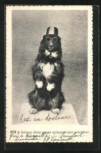 AK Hund mit Hut, Sonnenbrille und Pfeife macht Männchen, Rex le fameux chien, vermenschlichte Tiere