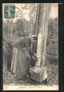 AK Landes, Récolte de la Résine, Harzsammlerin