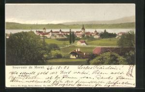 Lithographie Morat, Panorama
