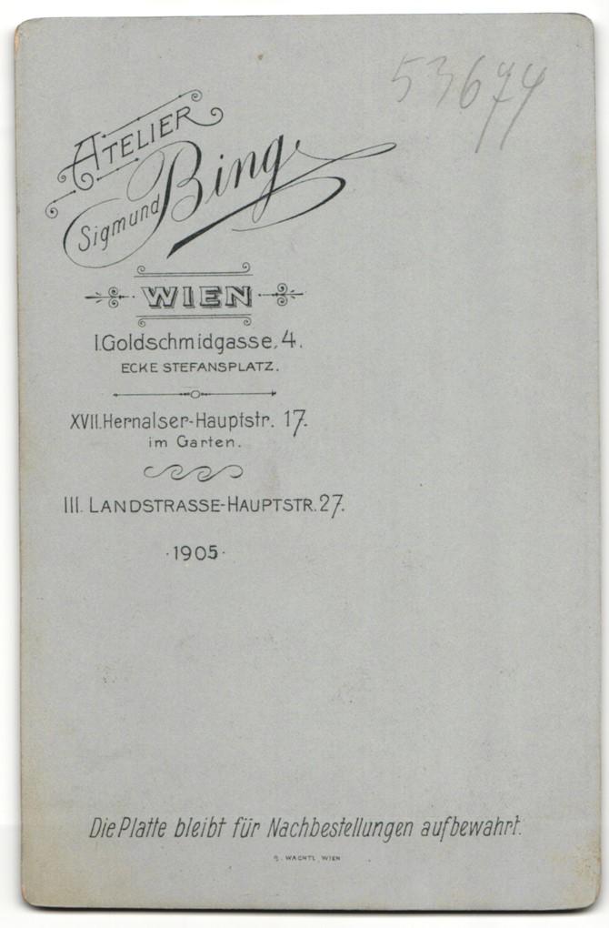 Fotografie Sigmund Bing, Wien, Portrait bürgerliche Dame in hübscher Bluse mit Hochsteckfrisur 1