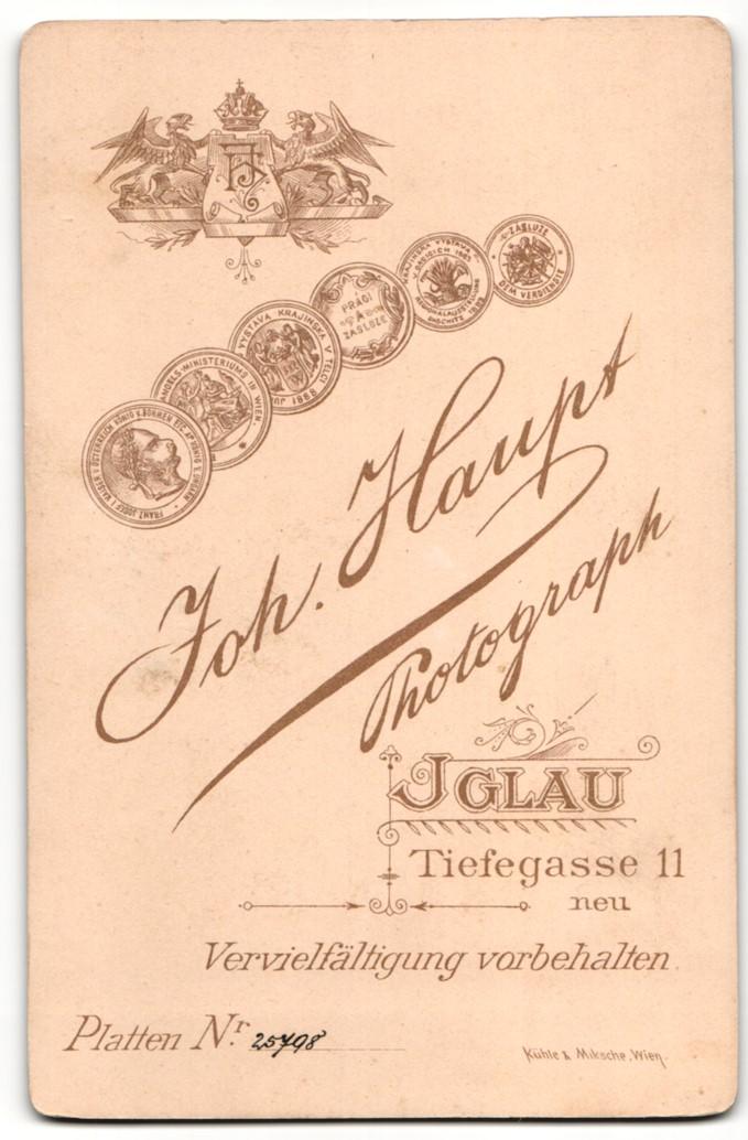 Fotografie Joh. Haupt, Iglau, Portrait bürgerlicher Herr im Anzug mit Brille und Vollbart 1