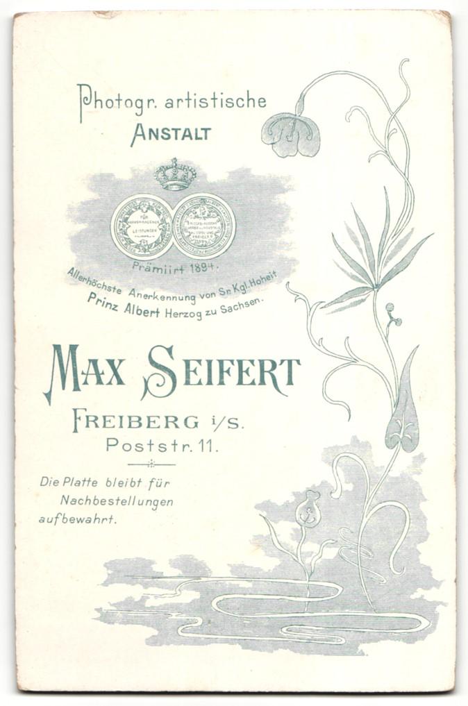 Fotografie Max Seifert, Freiberg i/S, Portrait Fräulein in Kleid mit Schirm 1