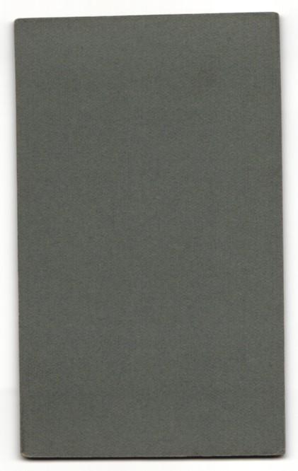 Fotografie Paul Schindler, Wittenberg i. S., Portrait dunkelhaariger Herr mit Mittelscheitel 1