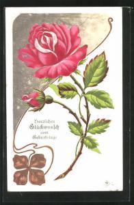 Präge-AK Prachtvolle rosa Rosenblüte, Glückwunsch zum Geburtstag!