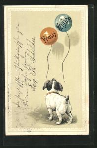 AK Hund blickt neugierig zu den Luftballons Prosit Neujahr