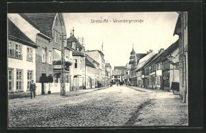 AK Strelitz-Alt, Blick in die Wesenbergerstrasse