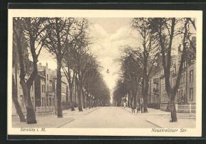 AK Strelitz i. M., Blick in die Neustrelitzer Strasse