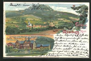 Lithographie Milseburg & Rhön, Gesamtansicht, Gasthaus zum Bahnhof