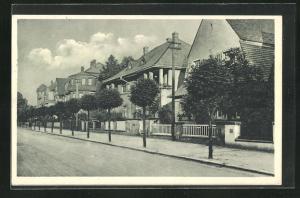AK Neu-Ilsenburg, Strassepartie in der Friedensallee