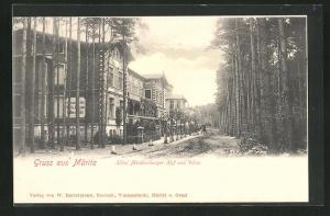 AK Müritz, Hotel Mecklenburger Hof und Villen