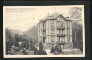 AK Wiesbaden, Hotel Villa Taunusblick